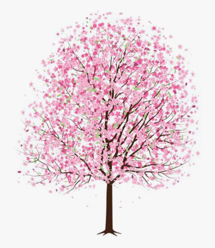 Mq Pink Flower Flowers Tree Trees Trees Flowers Png Transparent