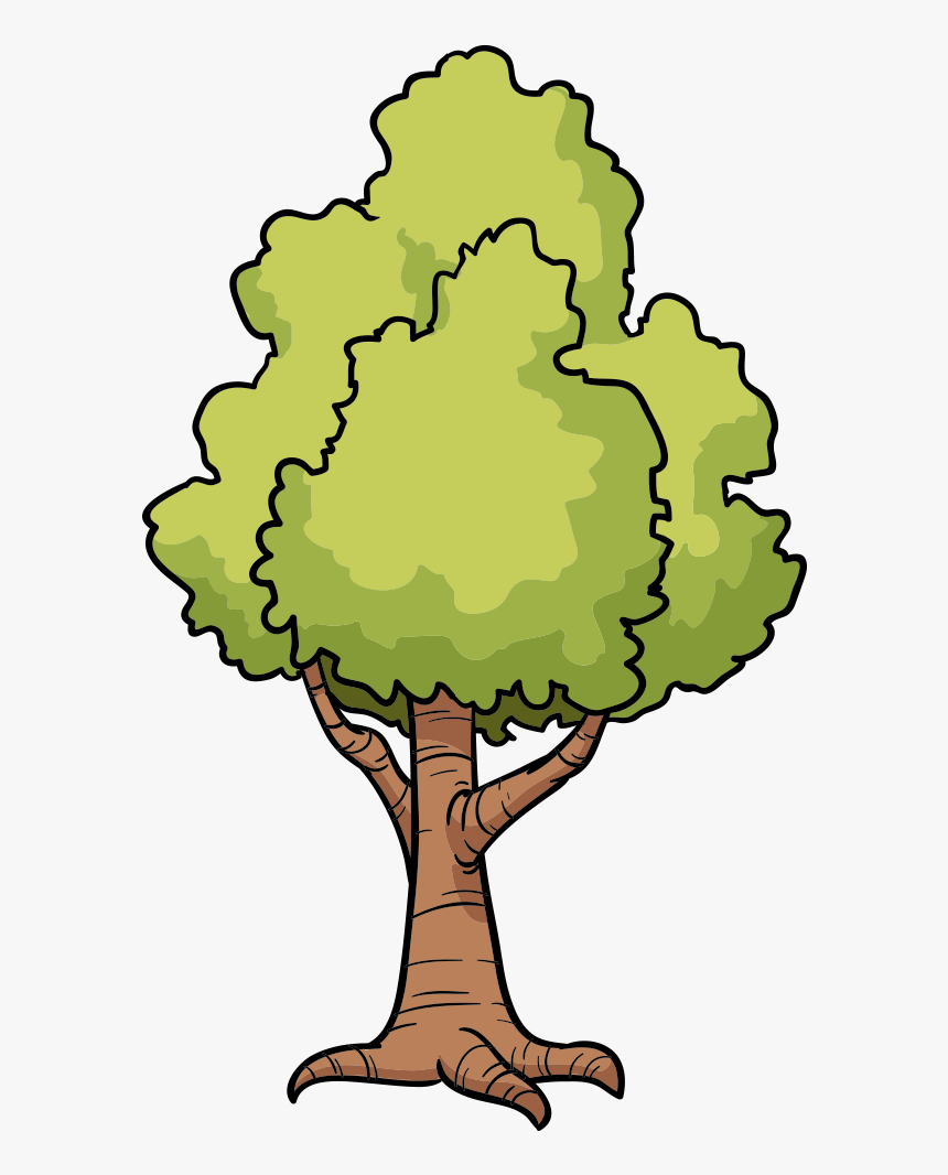 Cartoon Tree Drawing Clip Art Drawing Cartoon Tree Trees Hd Png Download Transparent Png Image Pngitem