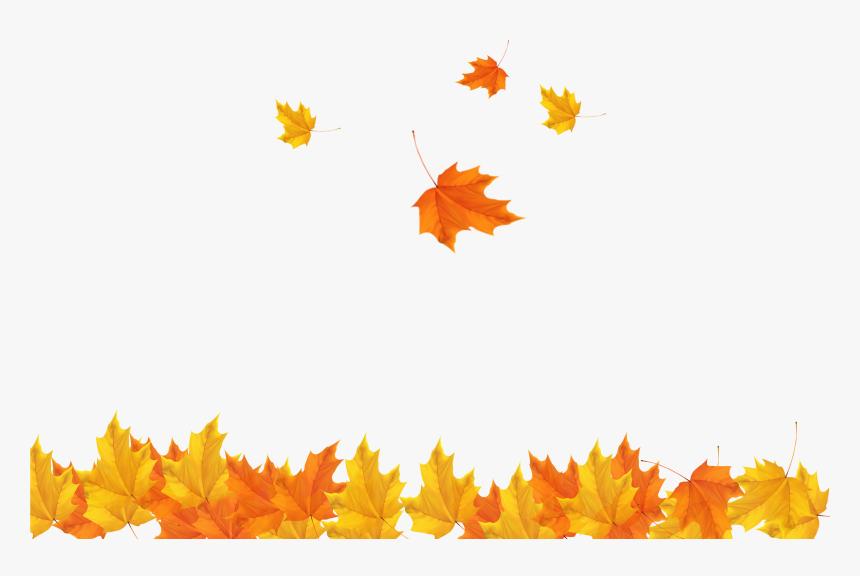 Free Leaf Clipart Transparent, Download Free Clip Art, Free Clip Art on  Clipart Library