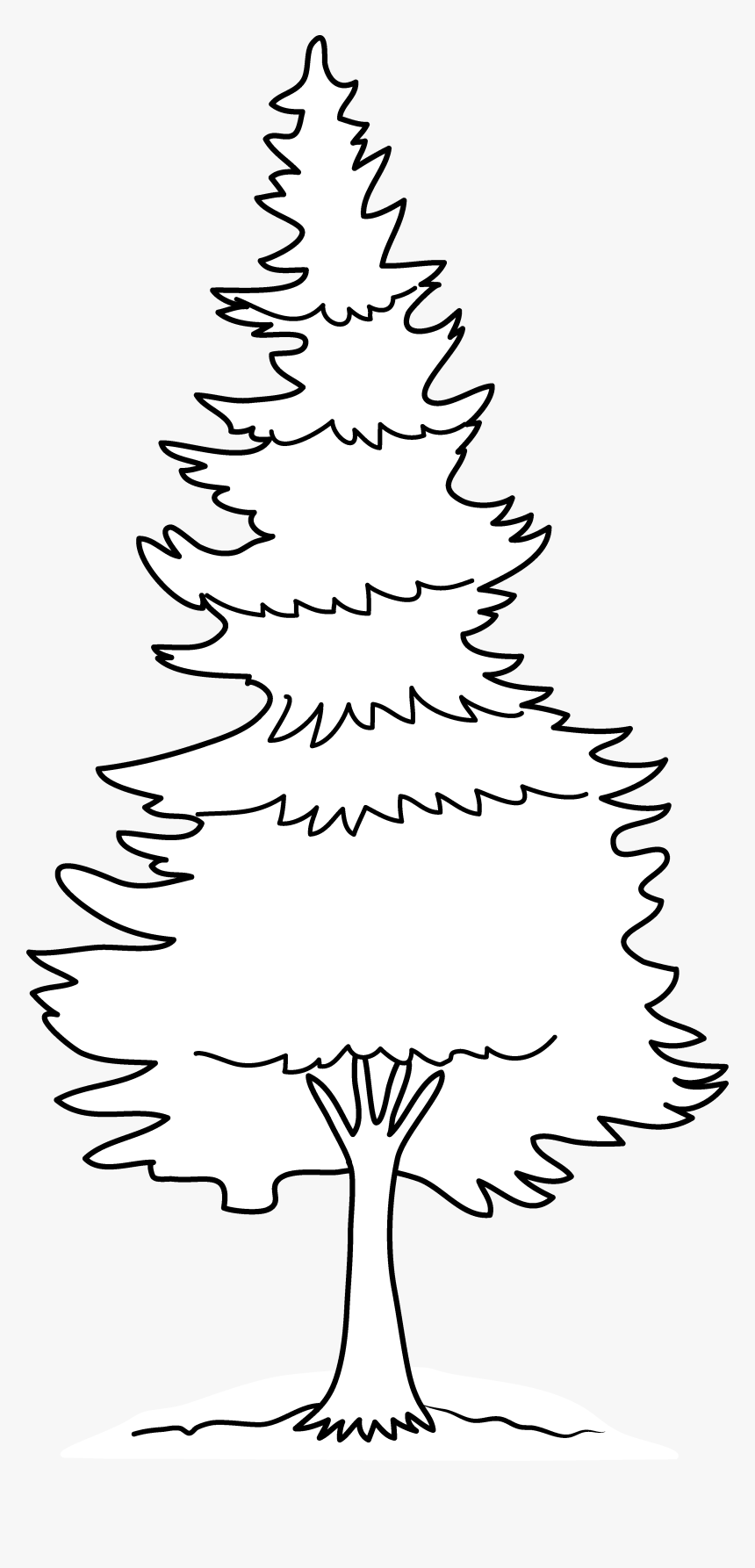 Clipart Forest Pine Tree - Pine Tree Tree Coloring Pages, HD ...