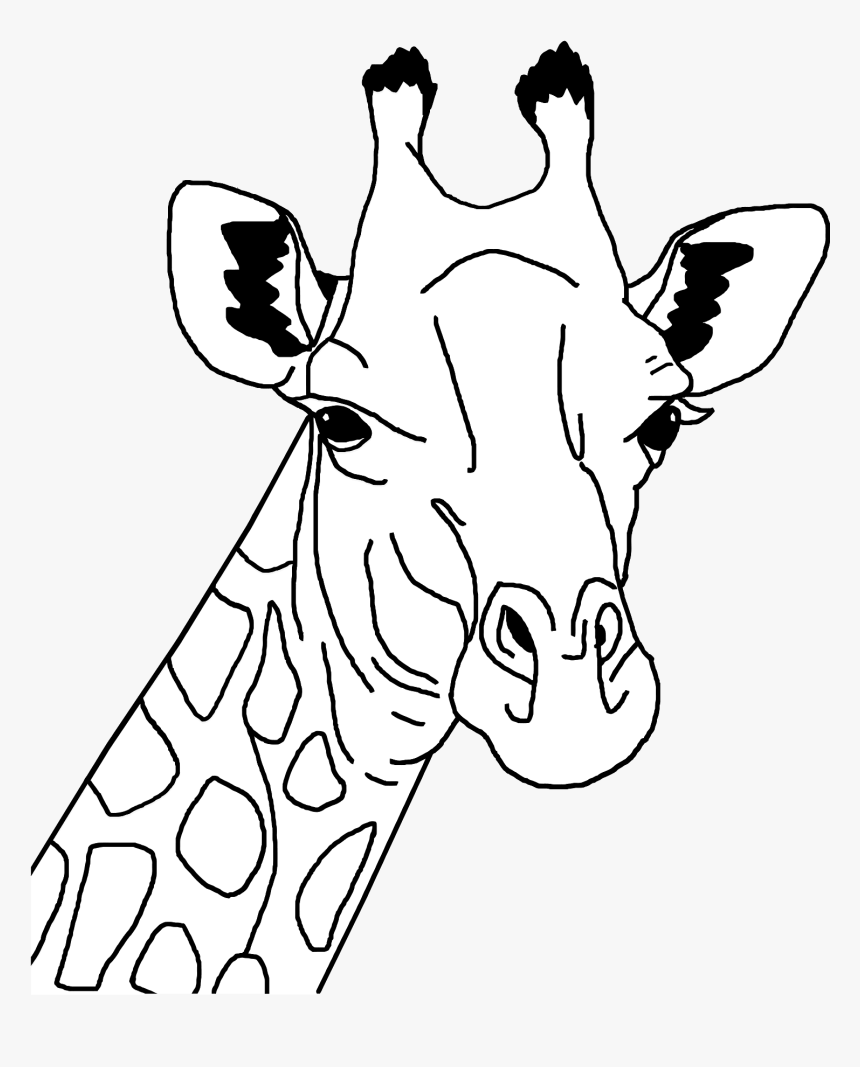 Giraffe Line Art Clip Arts Giraffe Face Clipart Black And White Hd Png Download Transparent Png Image Pngitem