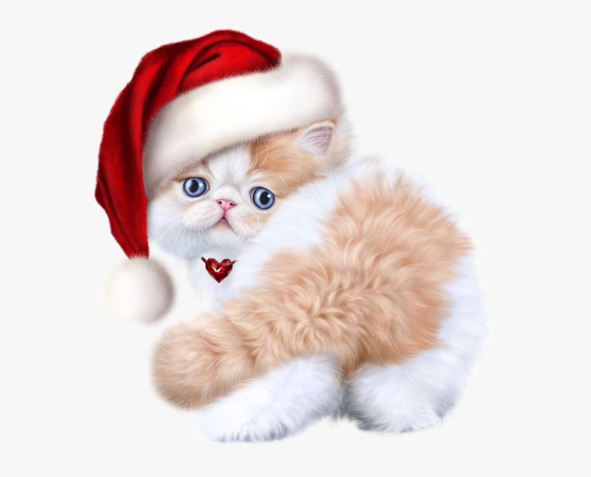 Tubes Noel Chat Cat Baby Kitten Cats Hd Png Download Transparent Png Image Pngitem