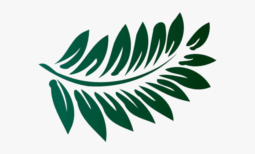Fern Png Silhouette Transparent Background Transparent Tropical Leaf Clipart Png Download Transparent Png Image Pngitem Free for commercial use no attribution required high quality images. fern png silhouette transparent