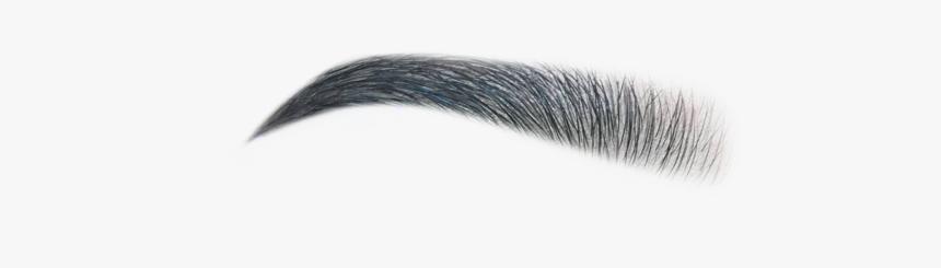 Eyelash Extensions Hd Png