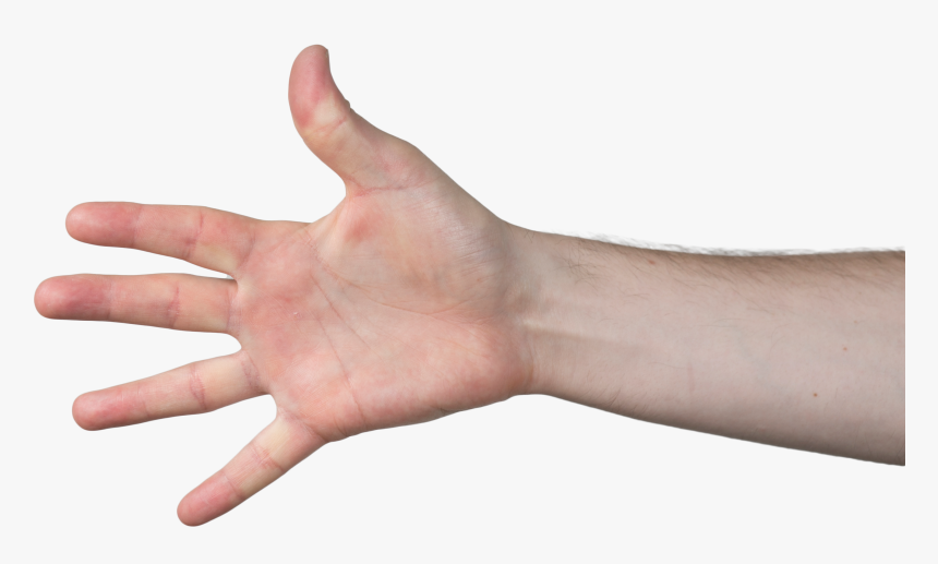 Hand Png Grab / Are you searching for hand grabbing png images or vector?