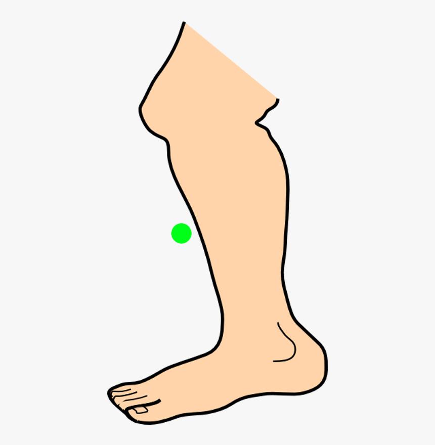 Leg Clip Art