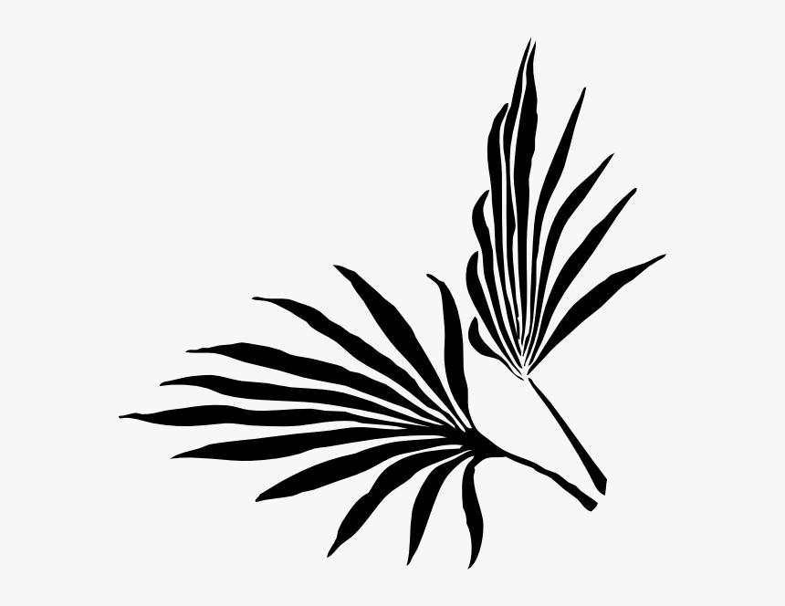 Botanical Vector Palm Leaf Palm Frond Clip Art Hd Png Download Transparent Png Image Pngitem See more ideas about leaf outline, tropical, leaf template. botanical vector palm leaf palm frond