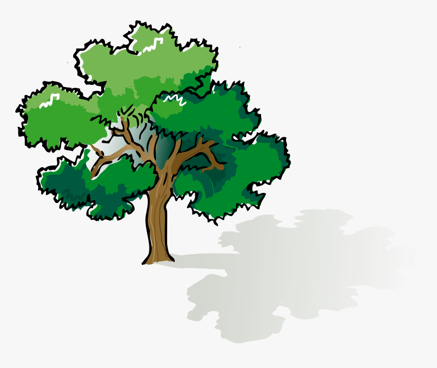 Oak Clipart Leafy Tree Narra Tree Clip Art Hd Png Download Transparent Png Image Pngitem Are you searching for cartoon tree png images or vector? narra tree clip art hd png download