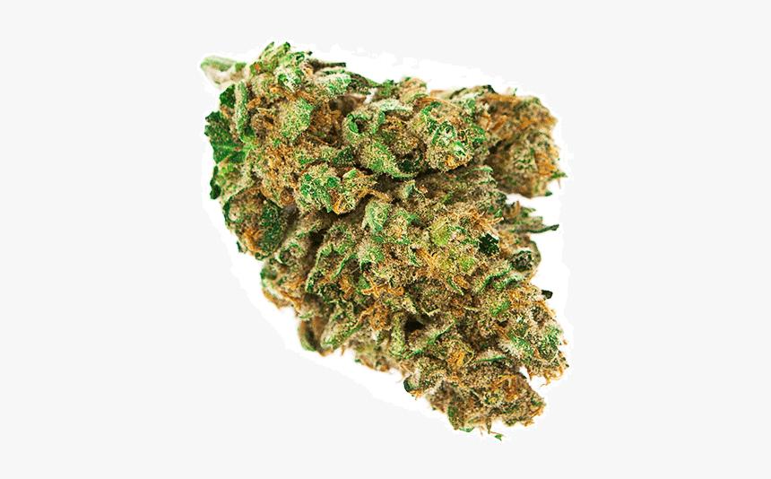 Weed Nugget Png Weed Bud Transparent Background Png Download Transparent Png Image Pngitem