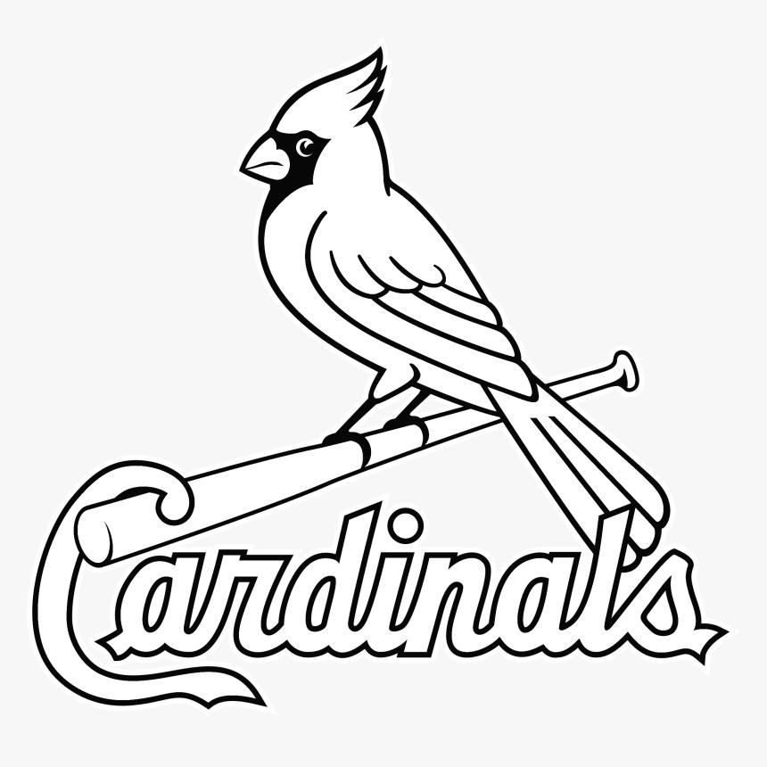 louis cardinals logo png transparent amp svg vector - st louis cardinals  logo outline, png download , transparent png image - pngitem  pngitem