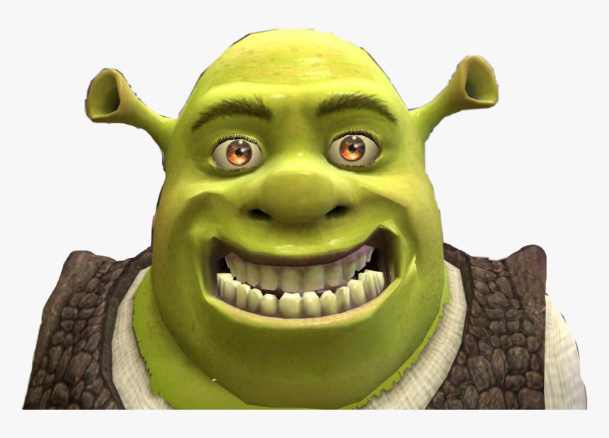 Shrek Funny Freetoedit Dank Shrek Memes Clean Hd Png Download Transparent Png Image Pngitem