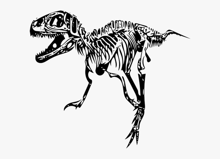 Transparent Tyrannosaurus Rex Clipart Transparent T Rex Skeleton