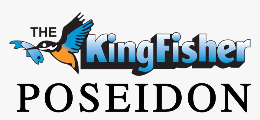 Kingfisher Hd Png Download Transparent Png Image Pngitem