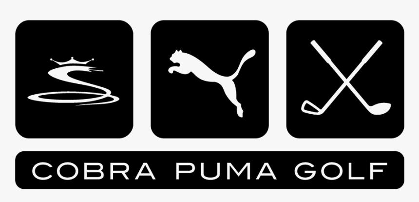 cobra puma
