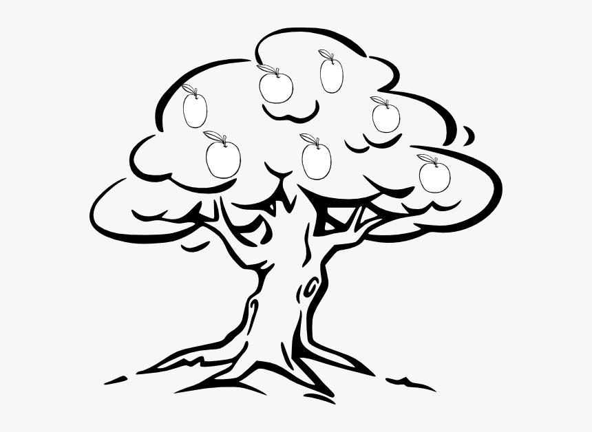 Mango - Tree - Clipart - Tree Black & White, HD Png ...