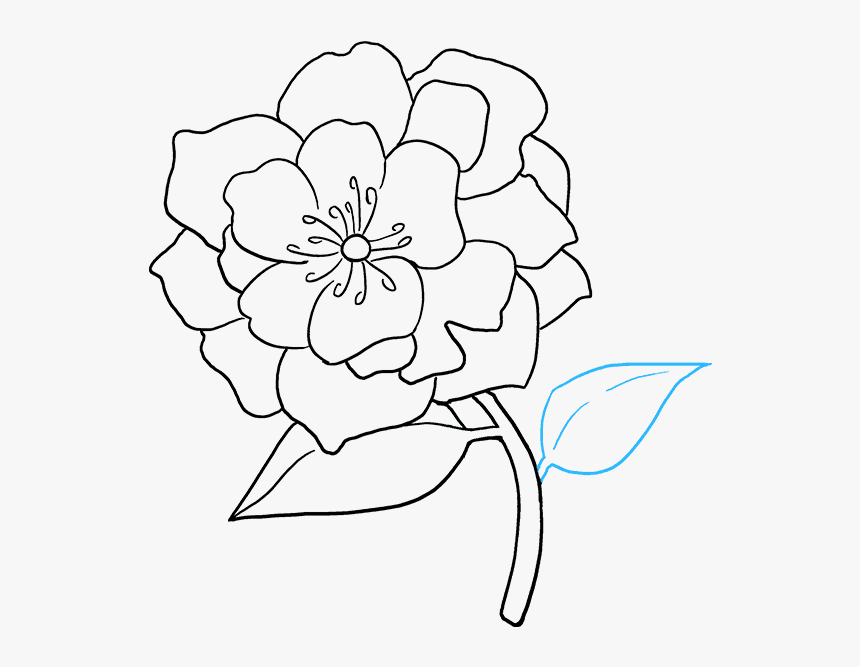 How To Draw A Really Easy Tutorial Cut Flower Drawing Hd