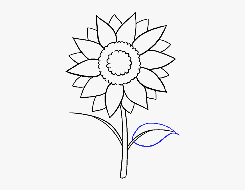 How To Draw Sunflower , Aesthetic Sunflower Drawing Easy, HD