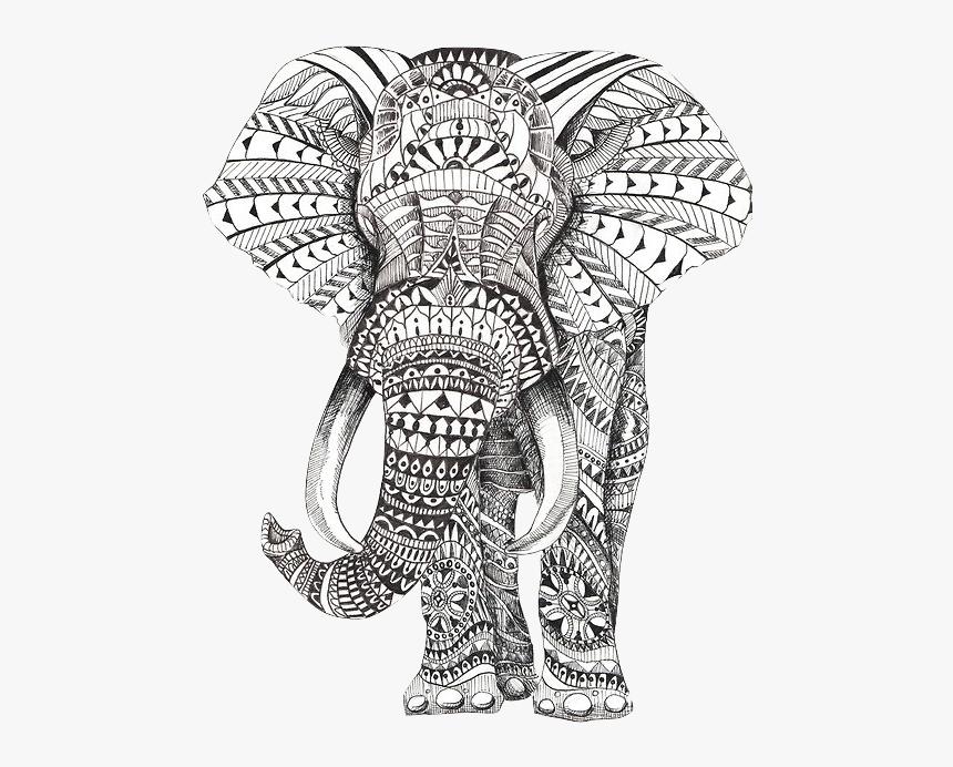 Mandala Elephant A Imprimer Hd Png Download Transparent Png Image Pngitem Choose from over a million free vectors, clipart graphics, vector art images, design templates, and illustrations created by artists worldwide! mandala elephant a imprimer hd png