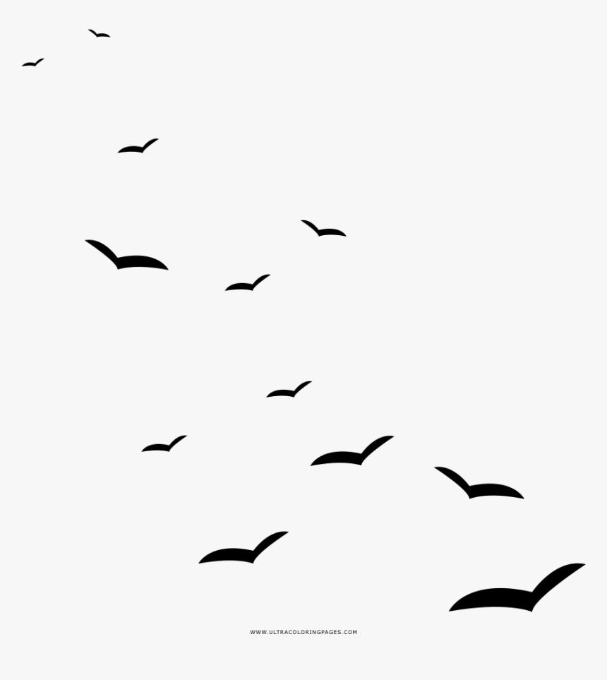 Seagulls Coloring Page Gaivota Png Transparent Png Transparent Png Image Pngitem