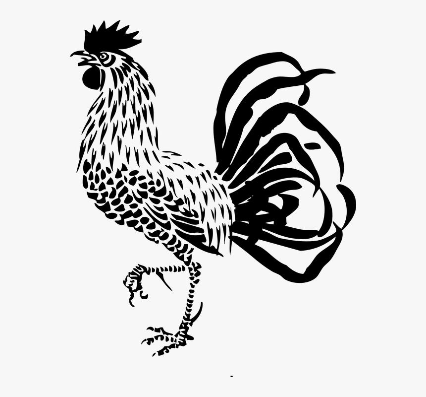 Paling Populer 26+ Gambar Karikatur Ayam Jantan - Gani Gambar