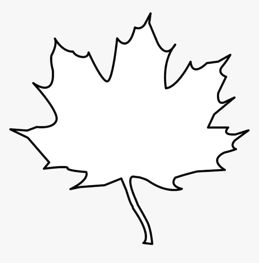 Leaf Outline Tree Clipart Free Cliparts Images On ...