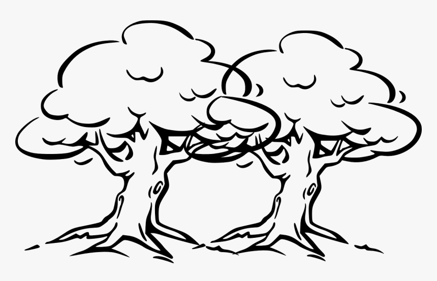 Clip Art Oak Tree Outlines Big Tree Drawing Easy Hd Png Download Transparent Png Image Pngitem Outline cartoon of homes in rural scene. clip art oak tree outlines big tree