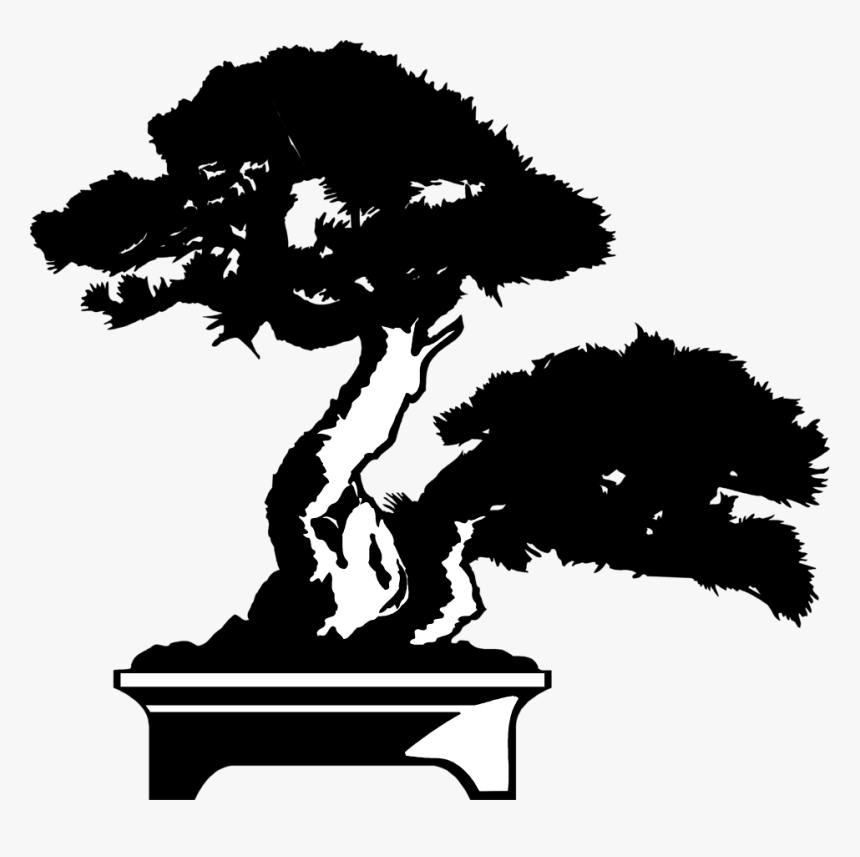 Bonsai Tree Drawing Png Transparent Png Transparent Png Image Pngitem