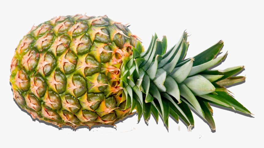 Fruit Images Pineapple Png Transparent Png Transparent Png Image Pngitem Pineapple png you can download 32 free pineapple png images. fruit images pineapple png transparent