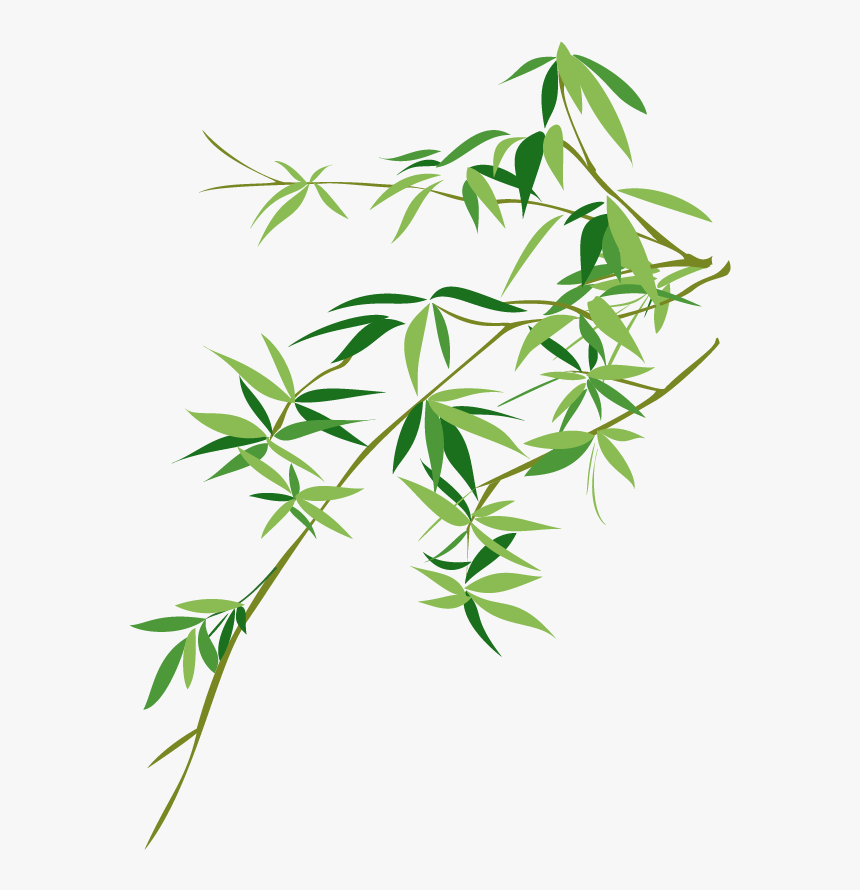 vector bamboo bambusodae painting chinese png download bamboo leaf vector png transparent png transparent png image pngitem bamboo leaf vector png transparent png
