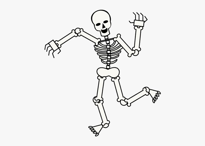 Skeleton Transparent Cartoon - Cartoon Transparent Background Skeleton, HD Png Download , Transparent Png Image - PNGitem
