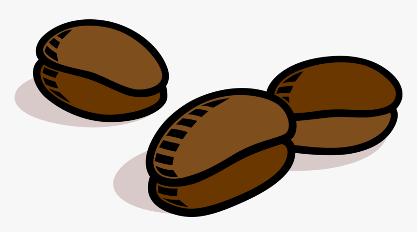 vector illustration of coffee bean seed of the coffee bean free vector hd png download transparent png image pngitem vector illustration of coffee bean seed