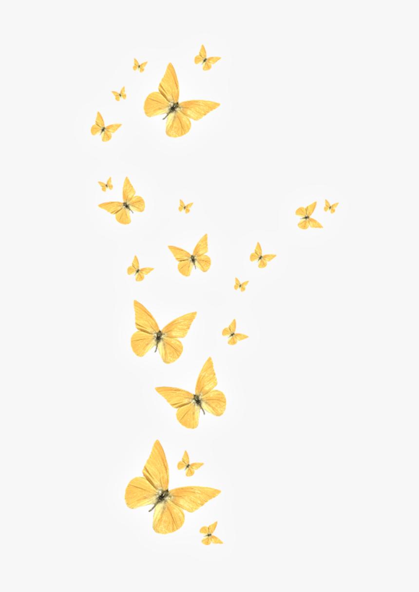 Transparent Gold Butterfly Png Picsart Light Butterfly Png Png Download Transparent Png Image Pngitem