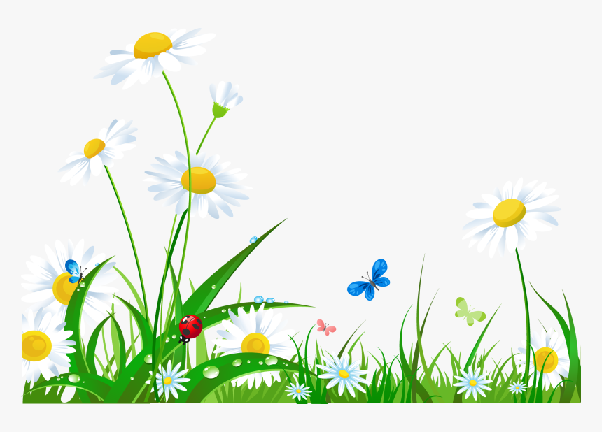 Laptop Desktop Wallpaper Flower High Resolution Flower Grass Png Hd Transparent Png Transparent Png Image Pngitem