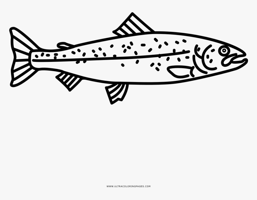 free salmon Coloring Pages | coho salmon Colouring Pages | Salmon ... | 669x860
