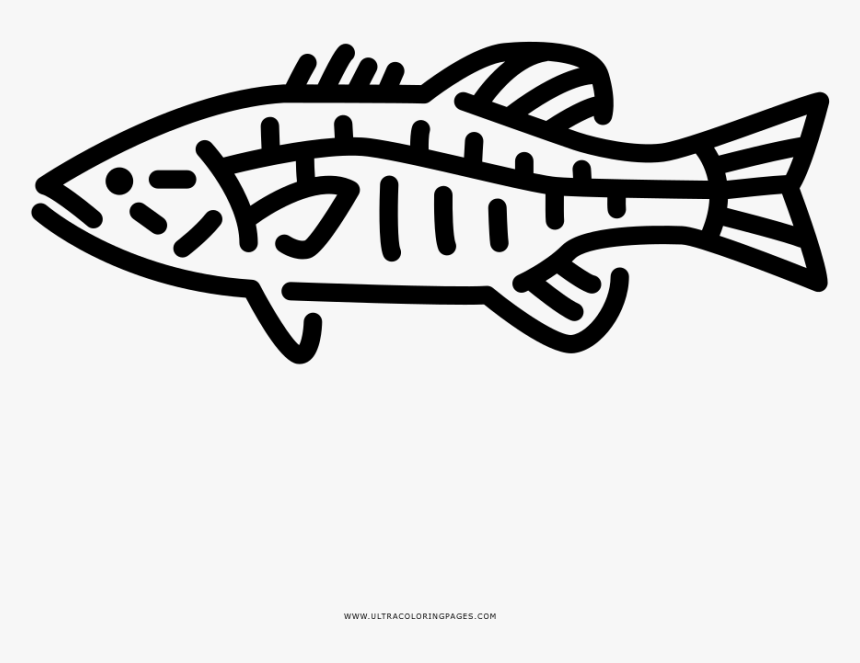 Transparent Largemouth Bass Clipart Small Bass Fish Tattoo Hd Png Download Transparent Png Image Pngitem