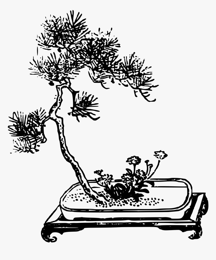 Bonsai With Flower Clip Arts Bonsai Hitam Putih HD