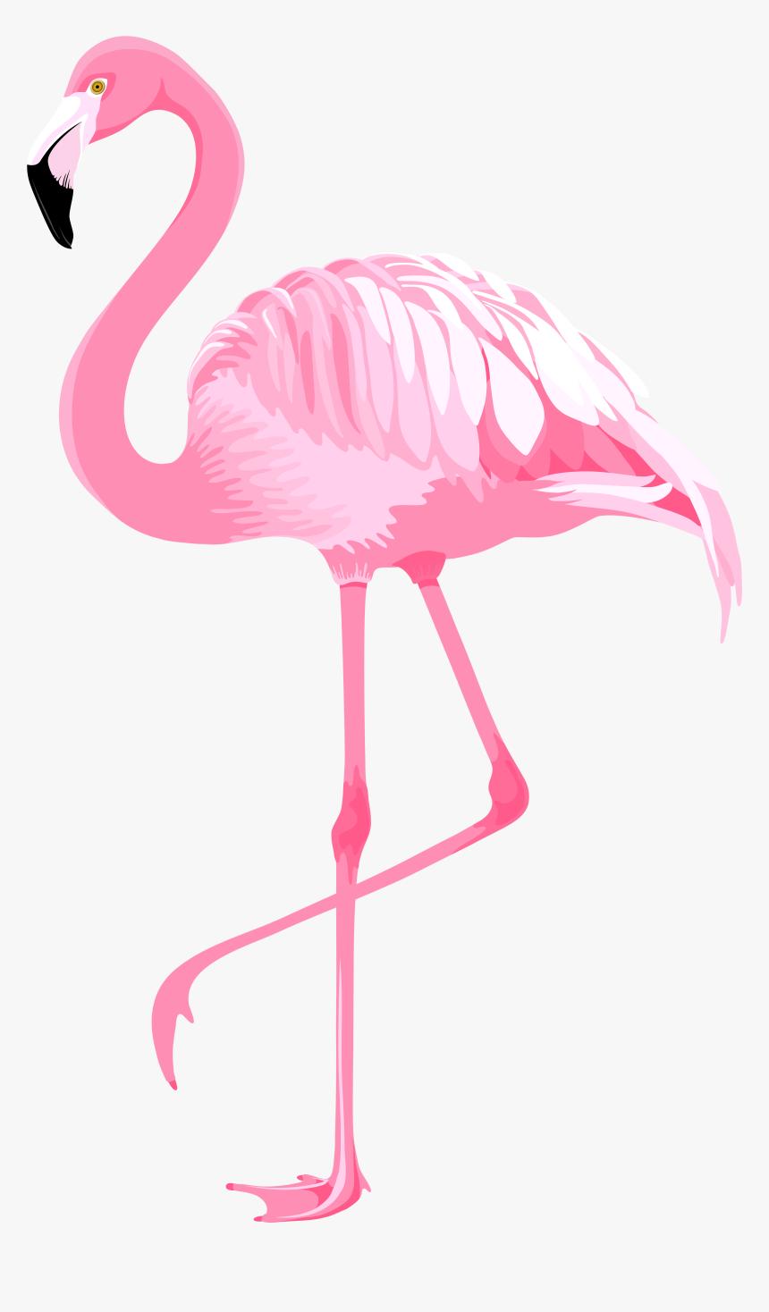 Flamingo Clip Art Pink - Clip Art Flamingo Png ... - photo#11
