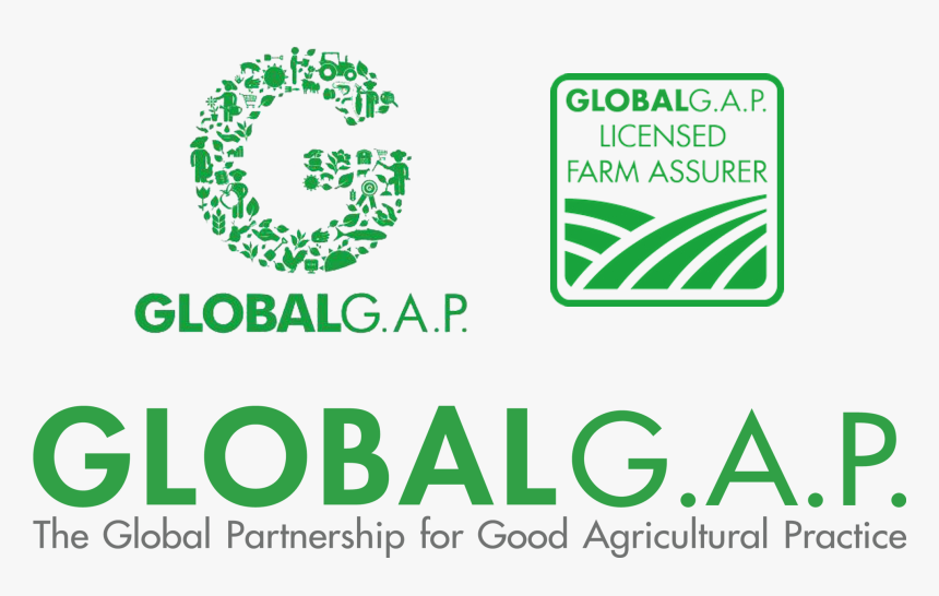 Certificazioni Global Gap Logo Globalgap Hd Png Download Transparent Png Image Pngitem