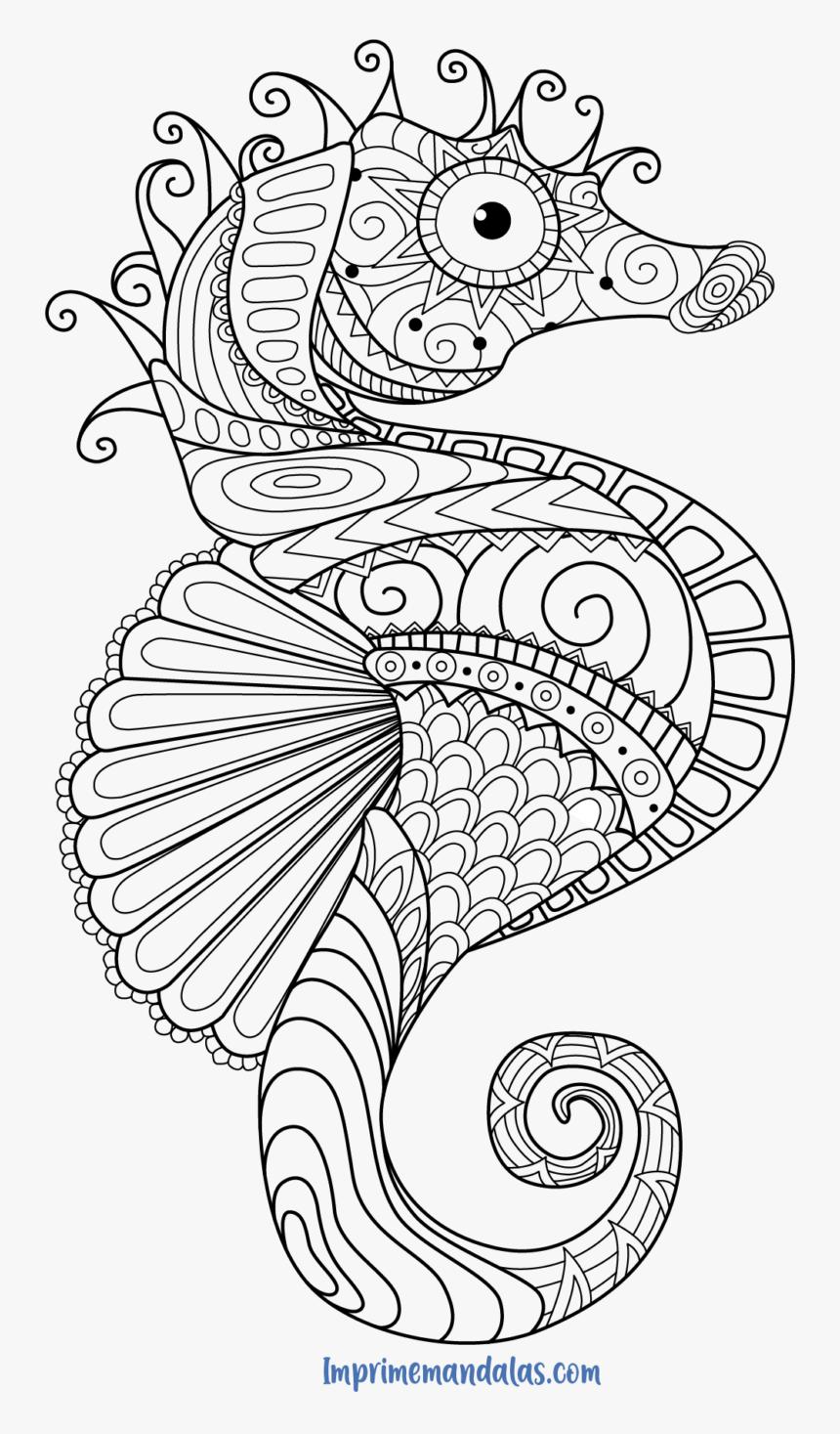 Mandala Caballito De Mar Para Colorear Seahorse Coloring Pages For Adults Hd Png Download Transparent Png Image Pngitem