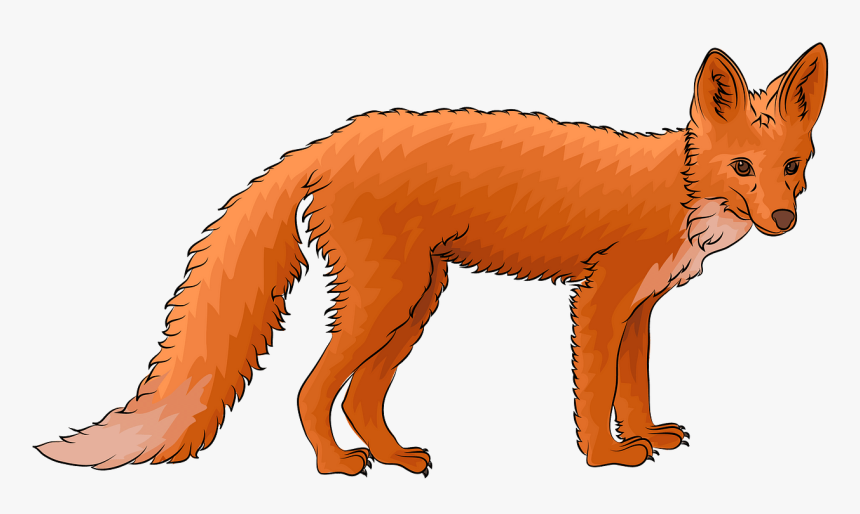 Get Fox Hd Png Pictures