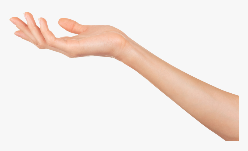 Transparent Mano Png Woman S Arm And Hand Png Download Transparent Png Image Pngitem Images that are inappropriate for young audiences or may be considered offensive will not be accepted. transparent mano png woman s arm and