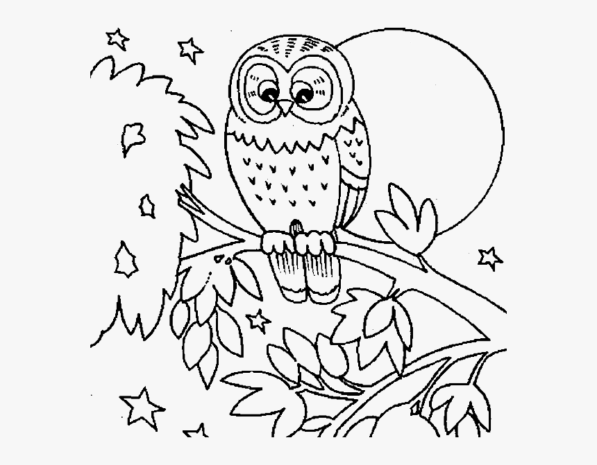 Cute Owl Coloring Pages Printable - Fall Animal Coloring Pages, HD Png  Download , Transparent Png Image - PNGitem