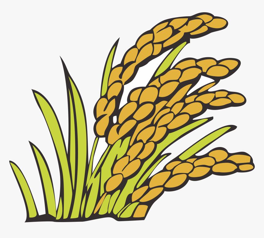 Wheat Clipart Bunga Padi Kartun Padi Png Transparent Png
