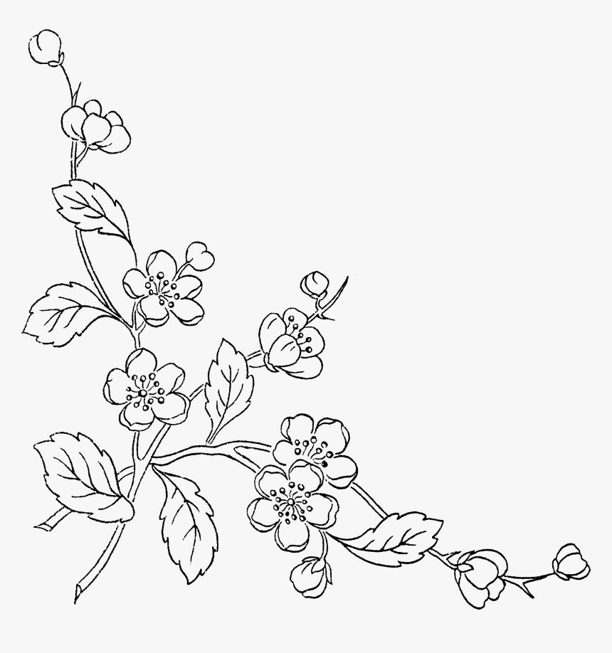 Of Flowers Transprent Free Transparent Background Flower Line Art Png Png Download Transparent Png Image Pngitem