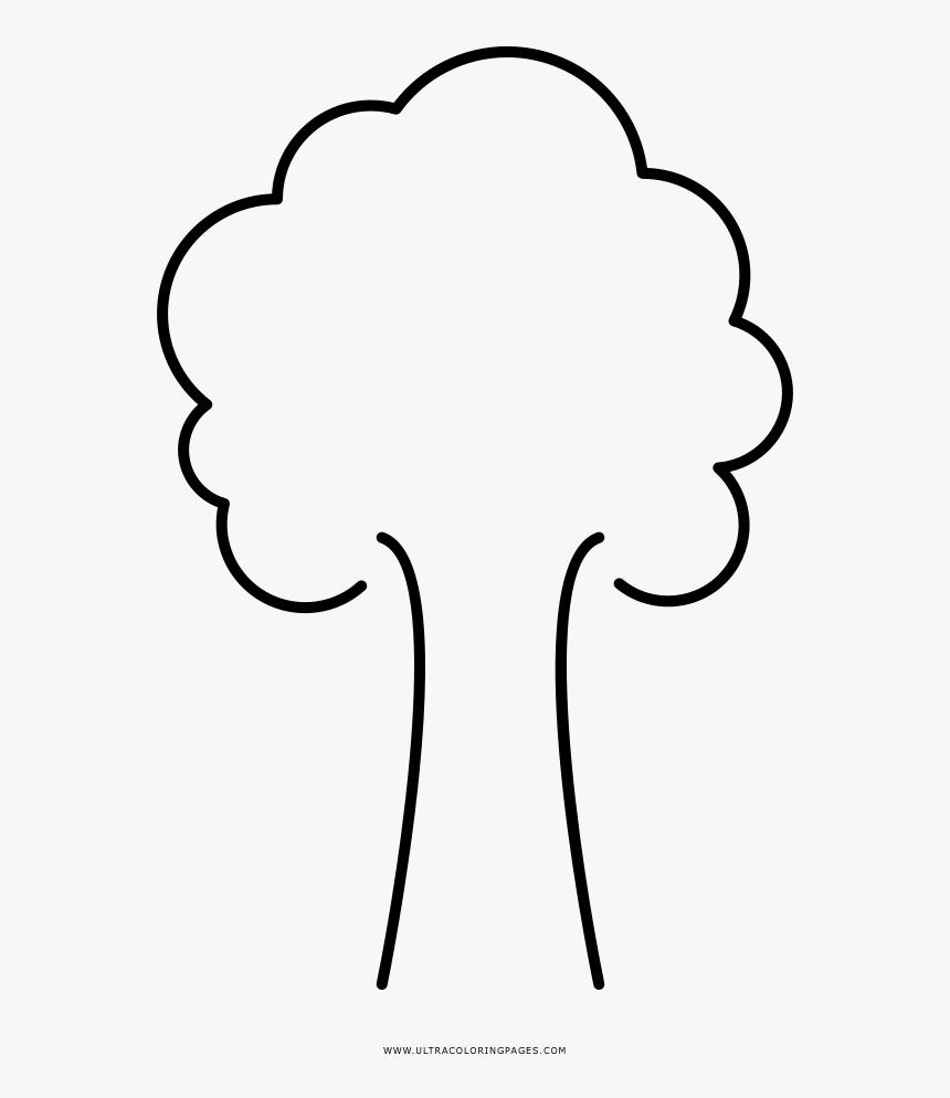 Rvore Para Colorir Desenho De Arvores Para Colorir Hd Png