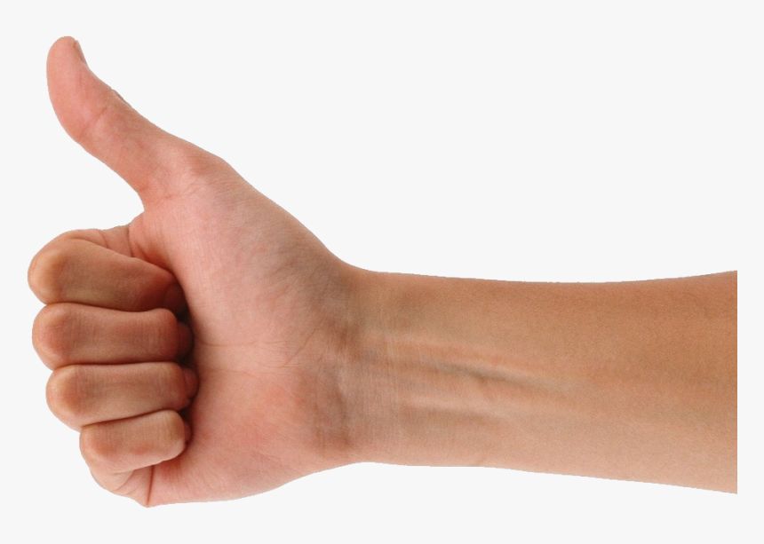Transparent Like Thumb Png Thumbs Up Hand Transparent Png Download Transparent Png Image Pngitem Download the hands, people png on the raccoon is typically delineated as having 'hands' opposable thumbs square measure lacking. transparent like thumb png thumbs up