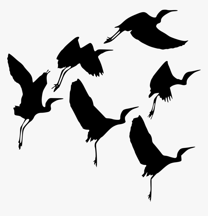 silhouette bird fly free photo burung png transparent png transparent png image pngitem silhouette bird fly free photo burung