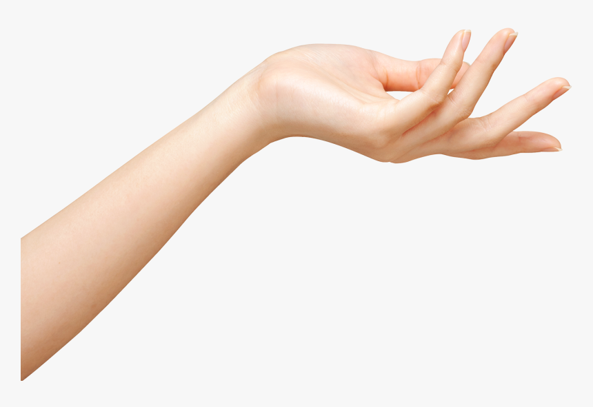 Transparent Transparent Hand Png Transparent Girls Hand Png Png Download Transparent Png Image Pngitem Polish your personal project or design with these hand transparent png images, make it even more personalized and more attractive. hand png transparent girls hand png