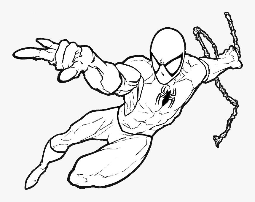 Homem Aranha Para Colorir E Pintar Hd Png Download