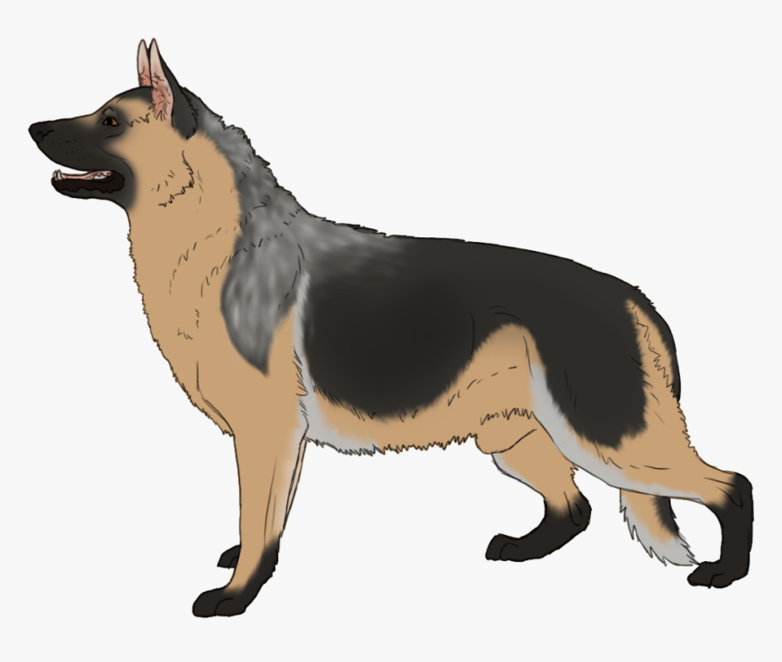 German Shepherd Kunming Wolfdog Dog Breed Clip Art Hd Png Download Transparent Png Image Pngitem They were so good at their jobs that they were soon drafted into other governmental positions such as fire rescue attendants. german shepherd kunming wolfdog dog